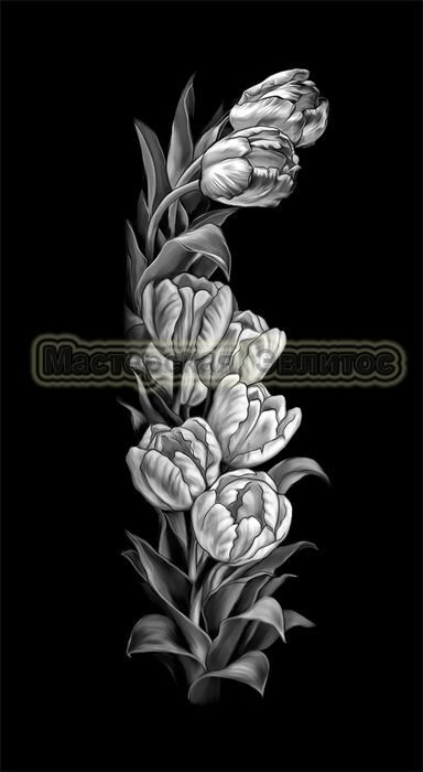 Тюльпаны №3