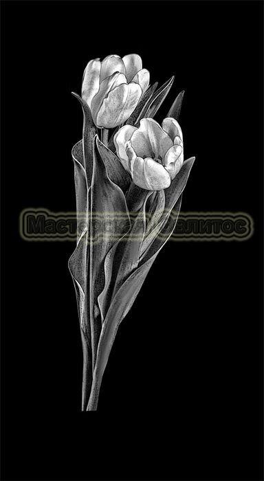 Тюльпаны №5