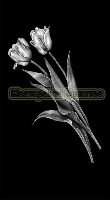 Тюльпаны №7 в Томске