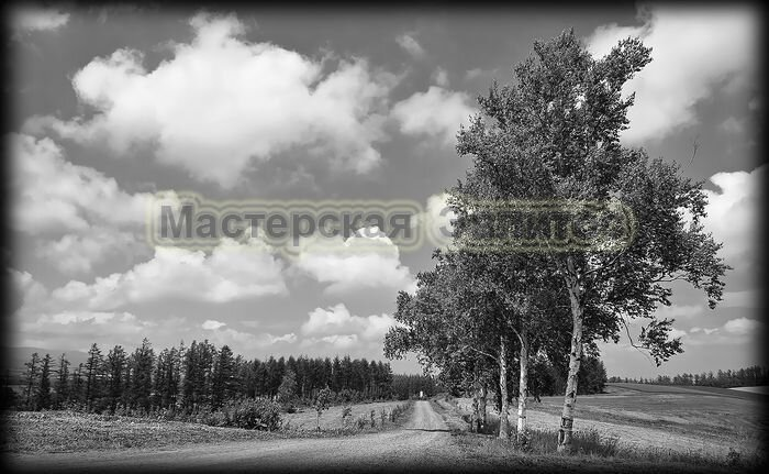 Пейзаж №41