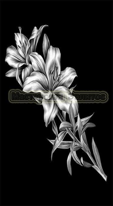 Лилии №6