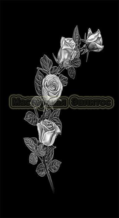 Розы №2