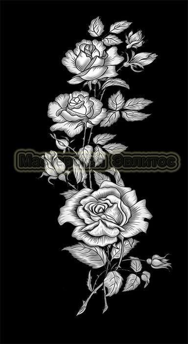 Розы №10 в Томске