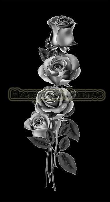Розы №11 в Томске