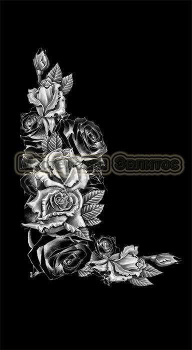 Розы №15