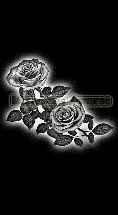 Розы №17