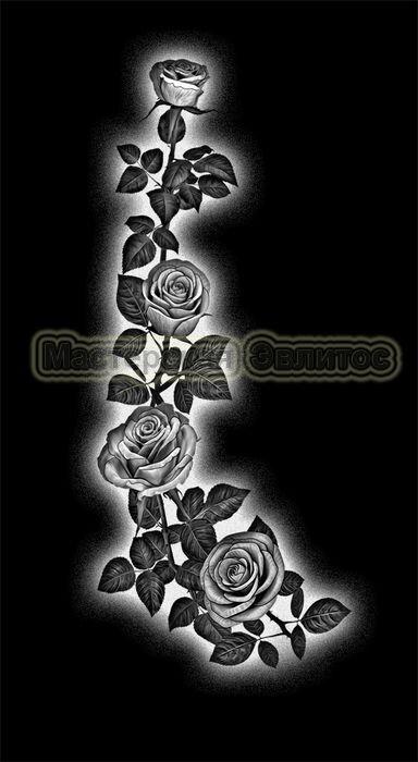 Розы №18 в Томске
