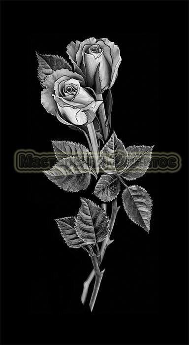 Розы №19