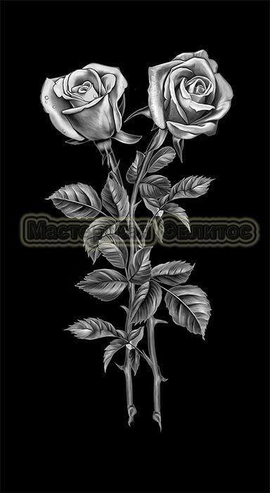 Розы №20